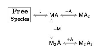 Sequential Binding Sites Model